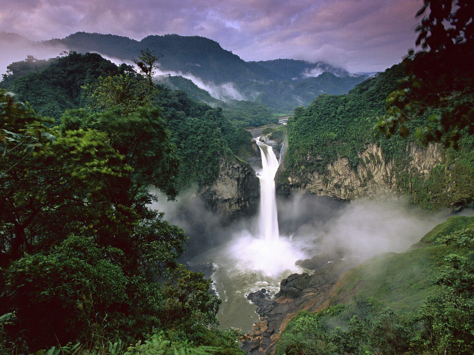 Parque Nacional Yasuni (Fuente: Hintadupfing Park)